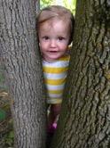 bailee-tree